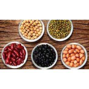 Bønner / Beans