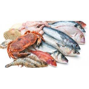 Fiske Produkter